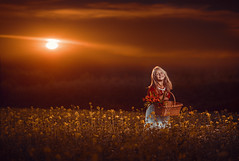 Basket of dreams (Damian Pirko) Tags: sunset portrait mood color basket girl smile flowers nature