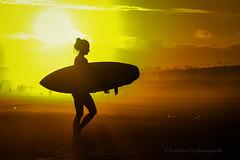 Shonan Summer 2 (higehiro) Tags: surfer d800 nikon shonan sunset beach sea silhouette