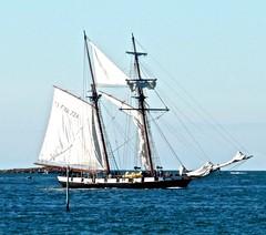 Bateau au bord de l'le de Batz (Alexia Thirion) Tags: ledebatz bretagne mer vacances bateau sea holiday boat britain