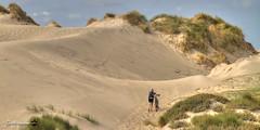 not the easiest way (GdeB fotografeert) Tags: gdebfotografeert september2016 strandvanwestenschouwen boswachterijwestenschouwen dunes duinen highdynamicrange flickrexplored