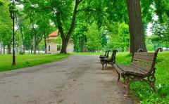 Le parc Kalemegdan (Vincent Rowell) Tags: raw tonemapped balkans2016 belgrade serbia park kalemegdan parkbench pixlr
