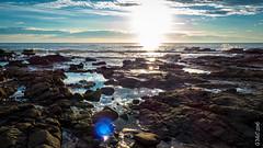P1140575 (Pursuedbybear) Tags: alexandraheadland sunshinecoast beach sunrise