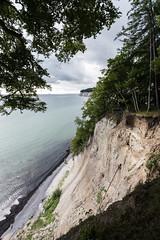 Coast (hansekiki ) Tags: rgen jasmund nationalpark baum bume landschaften canon 5dmarkiii ostsee balticsea