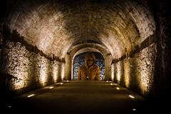 La via  chiusa (Nico Angeli) Tags: lucca mura scroce sotterranei