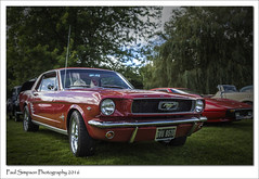 1965 Ford Mustang (Paul Simpson Photography) Tags: fordmustang americancar ford 1965 1960s lincolnshirecarshow classiccars carshows vintagecars rand lincolnshire september2016 sonya77 imagesof imageof photoof photosfrom photosof car transport oldcars vehicle