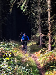 Out of the Darkness (Gee & Kay Webb) Tags: mtb mountainbike trails trees forest riding wales cycling clocaenog