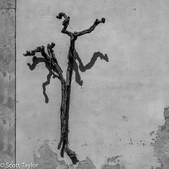 Crucifix (Scrufftie) Tags: handheld bw style mono abruzzo monochrome travel blackwhite church canonef24105mmf4lisusm italy italia canon5dsr roccascalegna photoshopcc canon texture