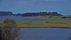 1331-11L (Lozarithm) Tags: arne rspb dorset landscape estuary pooleharbour k1 55300 hdpda55300mmf458edwr