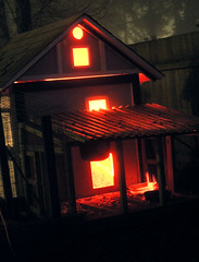 House of Hell (cat-squid) Tags: winter red orange pet house black bird chickens chicken yellow night fence dark lights time magic small evil glowing chicks satanic