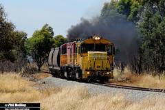 7 January 2013 2110  2113 Epping Forest Tasmania (RailWA) Tags: forest tasmania epping 2110 tasrail 2113 railwa philmelling