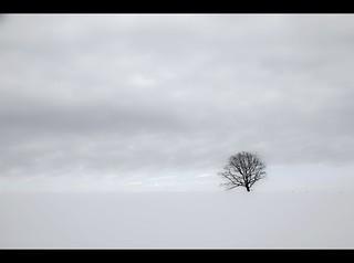 tranquillity (Sauerland)
