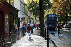 Number 94* (Kyre Wood) Tags: blue autumn dog streets bus fall rain promenade washed usm bustle efs 1022mm cheltenham f3545