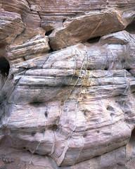 Veins (ken mccown) Tags: rock sandstone nevada erosion geomorphology valleyoffirestatepark whitedomes