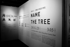Inernational Design Workshop III: Name The Tree / Dai Fujiwara + SCU (TingAn Ho) Tags: usc  namethetree    tinganho