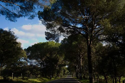 N2, Portugal ©  Still ePsiLoN