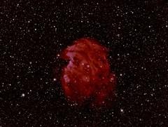 Monkey head in color (Mickut) Tags: nebula hydrogen hyd koma halpha ngc2174 emissionnebula Astrometrydotnet:status=solved colormapped Astrometrydotnet:version=14400 komakallio sxvrh18 Astrometrydotnet:id=alpha20130251470221