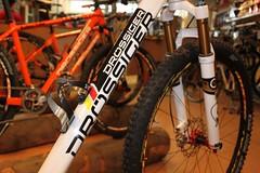 Details Team Bike