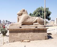KARNAK (Christopher.Michel) Tags: christopher michel geotagged geo:lat=257191916667 geo:lon=32656645 geo:alt=6700000 geo:country=egypt geo:state=muḩāfaz̧at al uqşur geo:city=al karnak geo:tool=houdahgeo christophermichel alkarnak muḩāfaz̧ataluqşur egypt luxor aswan farhorizons bobbrier mrmummy pyramid pyramids giza