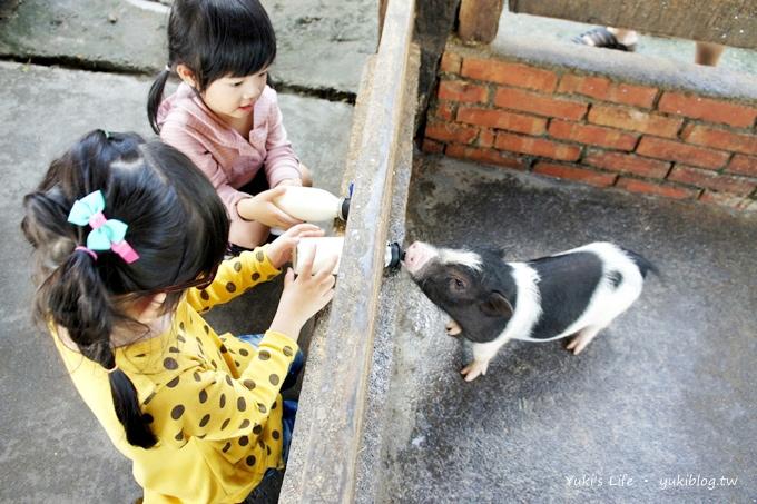 [宜蘭冬山]*親子Time《宜農牧場》入園只要20元.餵小豬喝ㄋㄟㄋㄟ超逗趣