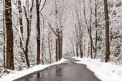 Road through Wonderland (John Cothron) Tags: road winter white snow cold color reflection tree wet 35mm canon landscape highway cloudy tennessee scenic overcast gatlingburg afternoonlight seviercounty canonef70200f4l greatsmokymountainnationalpark metcalfbottoms wearsvalley volunteerstate johncothron 5dmkii cothronphotography weargaproad johncothron img10209130302