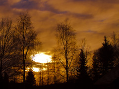 Silouettes (Vidar Ringstad,Skedsmo) Tags: blue trees winter sunset sky sun cold sol yellow clouds canon eos gold norge vinter europa europe flickr heaven frost gull norwegen himmel pic silouette 7d busker scandinavia bushes skyer solnedgang silouettes bl trr bilde vidar forzen skandinavia kaldt dul aurskog sunsetpic siluetter lierfoss ringstad