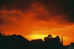 Um cu analgico (Joo Alff) Tags: sunset shadow sky cloud black film sol silhouette analog canon landscape lomo warm do cityscape grain cu nuvens filme por xr silhueta granulado analogico al1 redscale