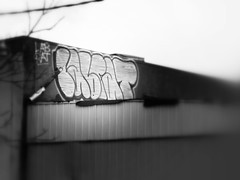 LABRAT (Anything for thee Shot) Tags: roof portland graffiti bubble labrat bubz