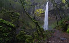 Elowah Falls (John Behrends) Tags: waterfall pentax columbia columbiagorge columbiagorgescenicarea pentaxk01