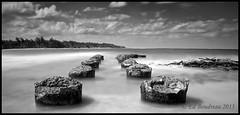 Old Pier (Ed Boudreau) Tags: ocean blackandwhite beach clouds hawaii pier sand surf driftwood pacificocean kauai tropical tropics anaholabeach leebigstopper