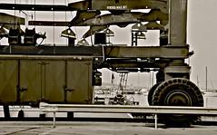 gru (enricoerriko) Tags: italien sea italy beach port faro photo mediterranean italia mare torre foto fiume barche chiesa campanile porto fotos ape portobello gatto gigante molo gabbiani italie marche braveheart enrico adriaticsea centrale gru rete scogli cantiere bitta regione pescatori eragon marinai navale civitanovamarche ciondolo portocivitanova ferdinando santomaro marineria mareadriatico pescherecci cittalta scafo ariete hurakan chienti citan apetta sanmarone santorredisantarosa provveditore erriko civitanovese cluana enniocalderoni enricoerriko fratellimedori gigliodelmare madiere fotodicivitanovamarche vincenzopaolucci