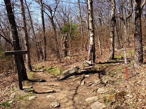 Beginning Of The Benton MacKaye Trail