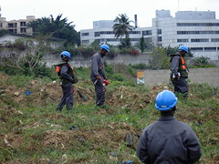 Inspection Site - Cte d'Ivoire (UNEP Disasters & Conflicts) Tags: water pollution environment development ctedivoire unep sampling naturalresources environmentalassessment unitednationsenvironmentprogramme unepmission uneppostconflictanddisastersmangementbranch