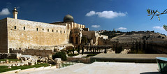 (hazratemasumehsa) Tags: muslims dome srael slam mosque rock jerusalem palestine mecca minaret places worship temple holy western travel peace middle mount jewish east old religious aqsa sacred arab walls city religion arabic muhammad relic history alaqsa faith tourist judaism architecture sanctuary mound ancient