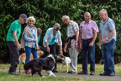 Six Friends, Three Dogs & Tom (Nikki & Tom) Tags: jazz dogs friends tom nicky jo audrey dave brian pete harris