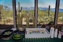Happy 100th Birthday, National Park Service (Sonora Dick) Tags: saguaronationalpark nationalparkservice centennial
