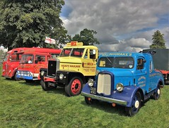 Colourful line-up at Astle Park 2016 (Shaun Ballisat Transport Photography) Tags: classic vintage old historic commercial vehicles lorry lorries truck vehicle astle park rally transport photos photography trucks recovery ddb 490 beck scammell uxp 110 bedford tk wdb 454k foden coach mtu 296 ddb490 uxp110 mtu296 wdb454k dodge breakdown highwayman