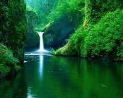 lago (anonimoflikr123) Tags: lago verde hermoso naturaleza