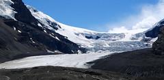 Columbia icefield (foxtail_1) Tags: icefieldsparkway alberta jasper jaspernationalpark columbiaicefield glacier snowfield