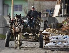 Carreteando la vida (sueniero02) Tags: carreta caballo pobreza trabajo nio nene basura basural