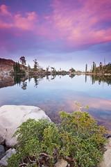 Jabu Jabu (Neuronico) Tags: jabu lake camping desolation tahoe wilderness sierra mountain california nature hike camp