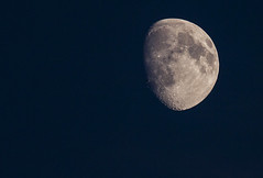 Contemplation nocturne... (mrieffly) Tags: lunedeseptembre canoneos50d 100400issriel