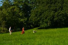 Walking with a dog (ChemiQ81) Tags: 2016 polska poland polen polish polsko chemiq  poljska polonia lengyelorszgban  polanya polija lenkija  plland pholainn   pologne puola poola pollando    lsk slezsko silesia schlesien outdoor centrum silesian wierklaniec park