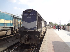 BGKT WDM3A+ABR WDM3A towards ABR DLS (Jai BGKT) Tags: road its for twins north some railway going journey till jp western brought got passenger these adi abu which ju towards jaipur ki rajasthan later gujarat ahmedabad jodhpur onward dls nwr bhagat maintainance kothi abr 18695 18908 18987 wdm3a bgkt