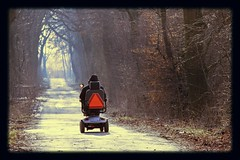 mobile (Mah Nava) Tags: winter light nature mobile forest licht natur human wald handicapped     behindert