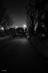 Where's Bogart?? (BGDL) Tags: street blackandwhite monochrome nightshot streetlamps prestwick 7daysofshooting nikkor18105mm13556g nikond7000 bgdl goforbokehtuesday elementsorganizer11 113picturesin2013 week32filmnoir