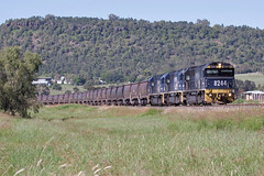 82 Class approach Gunnedah (PJ Reading) Tags: mountain train nw diesel empty country railway nsw locomotive coal loader range loading gunnedah northerntablelands pacificnational 8244 82class