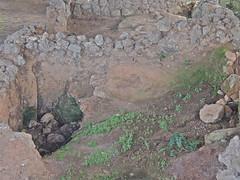 Pre-Roman Settlement (moacirdsp) Tags: portugal coimbra settlement distrito conmbriga preroman 2013 condeixaavelha