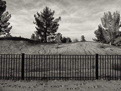 Golf Course, Phoenix Arizona (Blinking Charlie) Tags: arizona blackandwhite bw usa phoenix fence blackwhite contrail footprints golfcourse lightandshadow pinetrees 2012 cirrusclouds blinkingcharlie fujifilmx10