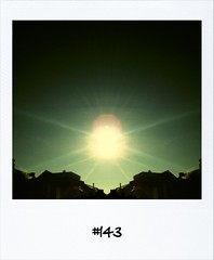 "#DailyPolaroid of 18-2-13 #143 • <a style=""font-size:0.8em;"" href=""http://www.flickr.com/photos/47939785@N05/8513211995/"" target=""_blank"">View on Flickr</a>"