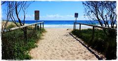 Byron Bay trip summertime. (~Zephyrus~) Tags: ilovegreen ilovetheraintoobutitstimeforachange